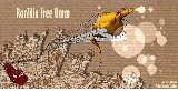 RarZilla Free Unrar Protable 2.55 ingyenes letöltése